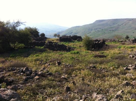 Golan
