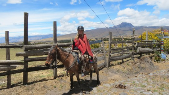 Horseback riding through the mountains