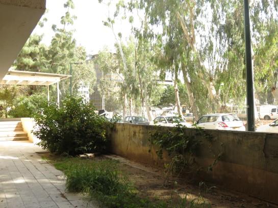 Yehuda Halevi building